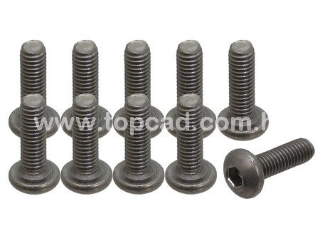 Titanium Screw / Round Head 3 x 10mm (10)