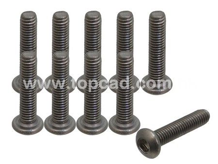 Titanium Screw / Round Head 3 x 14mm (10)